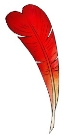plume-coeur